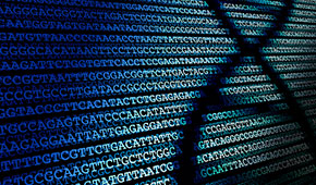 Innocence Clinic Seeking DNA Retesting in order to Exonerate Wrongly Convicted Client