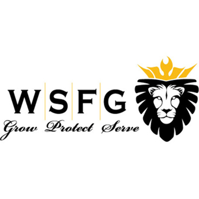 Wealth Strategies Financial Group