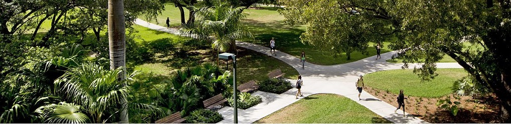 campus paths