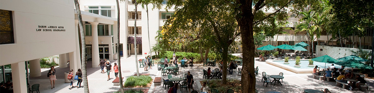 """The well-known student Bricks area in the heart of the law school quadrangle will be named """"The Bass Bricks"""" in Hilarie Bass's honor."""